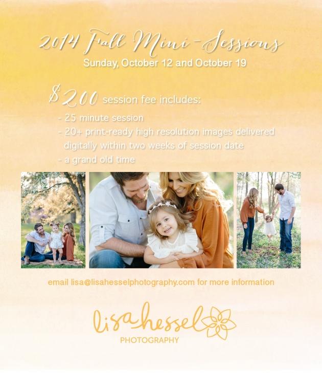 2014 fall minis