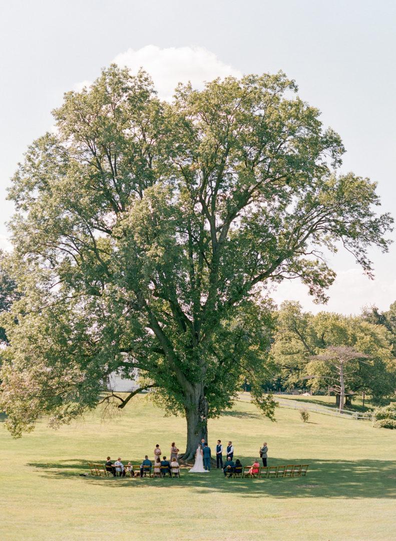 Kuhs Estate Wedding Photographer